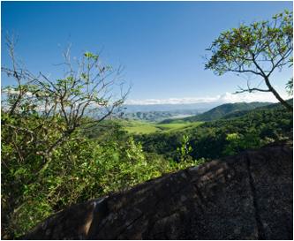Zwischen Hochebene und Urwald - Terra Roxa